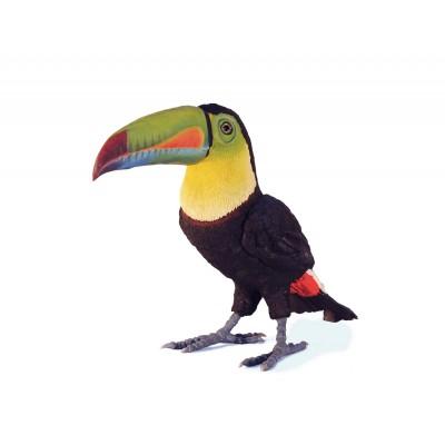 Tucán arcoíris