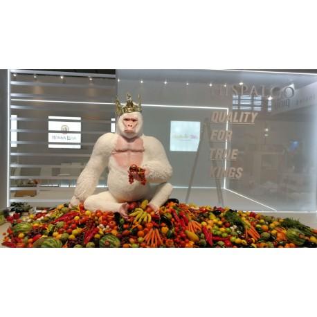 Gorila blanco (ejemplo de encargo).