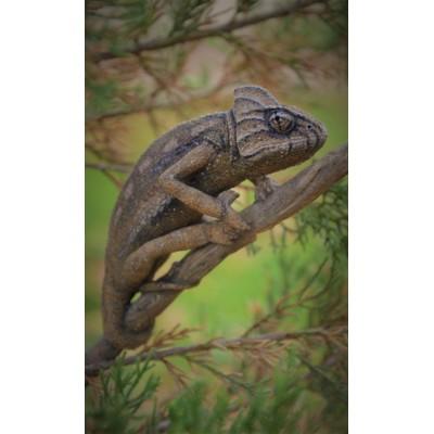 Camaleón común (ejemplo de encargo)
