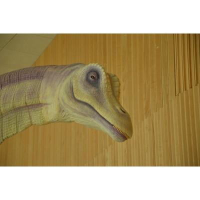 Titanosaurio (Ejemplo de encargo)